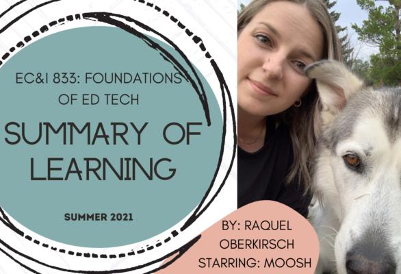 EC&I 833 Summary of Learning